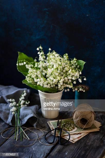 lily-of-the-valley - mughetto foto e immagini stock