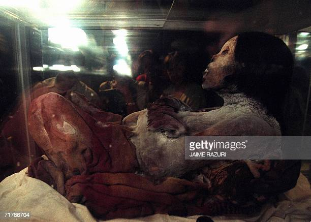 March 1999 picture showing Peruvian female mummy called Juanita or Ampato's Lady at the Nation's Museum in Lima Peruvian archaeologists will...