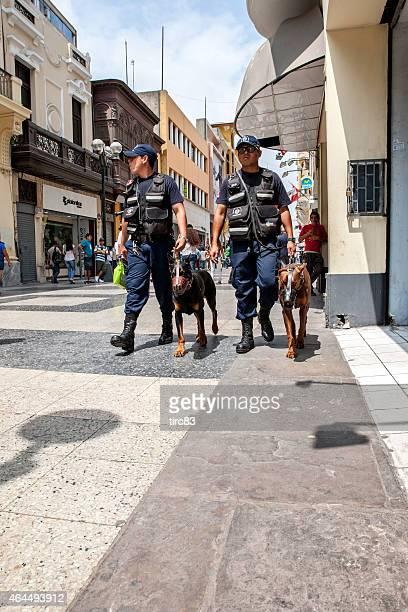 lima poliziotti con cane di pattuglia - doberman foto e immagini stock