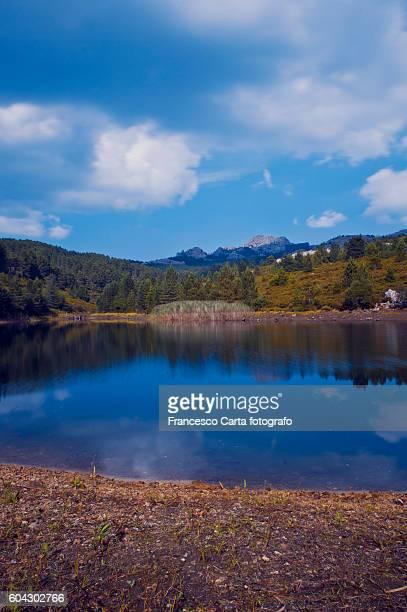 Limbara lake