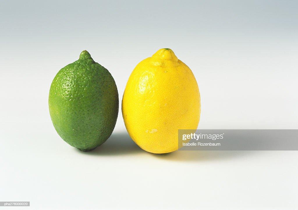 Lime and lemon : Stockfoto