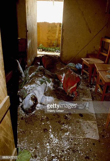 Lime covers the corpse of a villager killed by the release of toxic gas from Cameroon's Lake Nyos In August of 1986 the lake which is located in a...