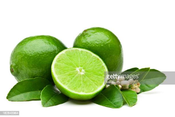 Lime fruits with leaves and flowers