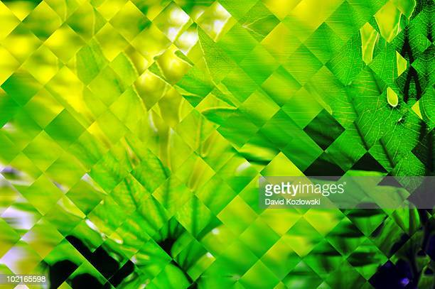 Lime Green Veins Leaves Diamonds Squares