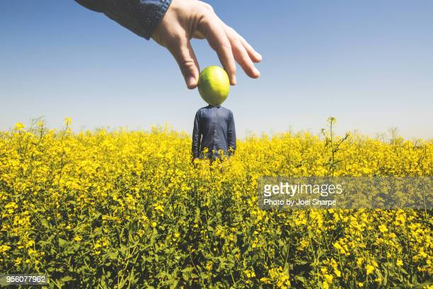 Lime Headed Man in a Field