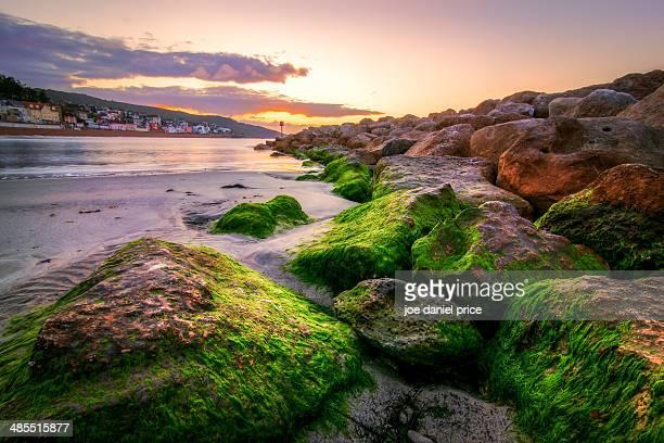 Lime Rocks at Lyme Regis, Dorset, England