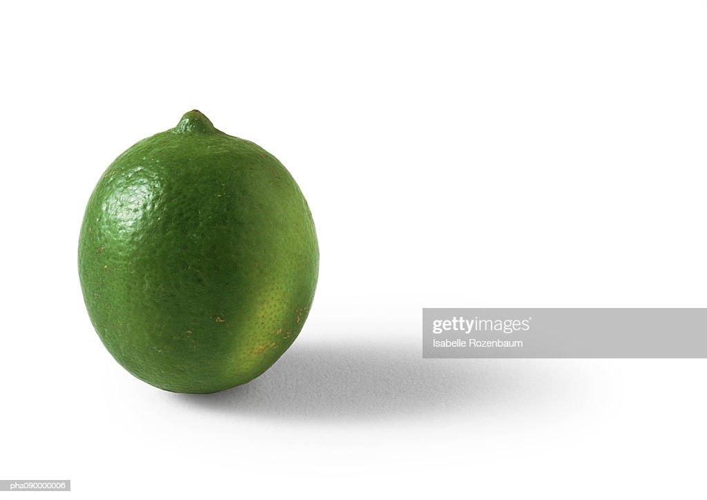 Lime, white background : Stockfoto
