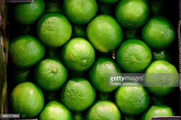 Limes are on display during the opening day of the 'Fruit Logistica' trade fair in Berlin on February 8 2017 The fair on the fresh food produce...