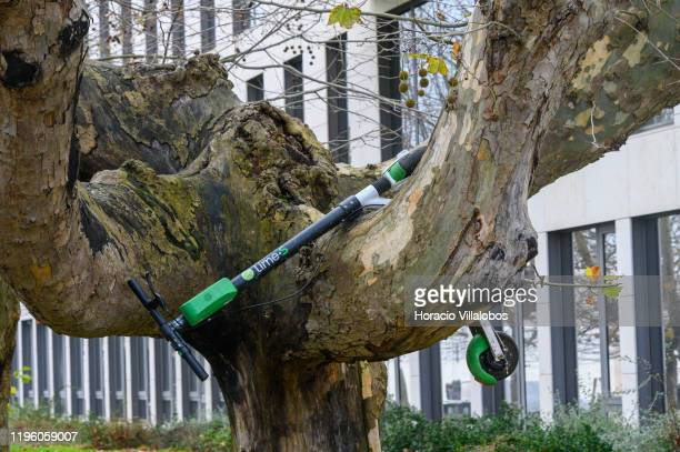 LimeS escooter sits astride tree branches near Riveira das Naus promenade on December 26 2019 in Lisbon Portugal Since their introduction in Lisbon...