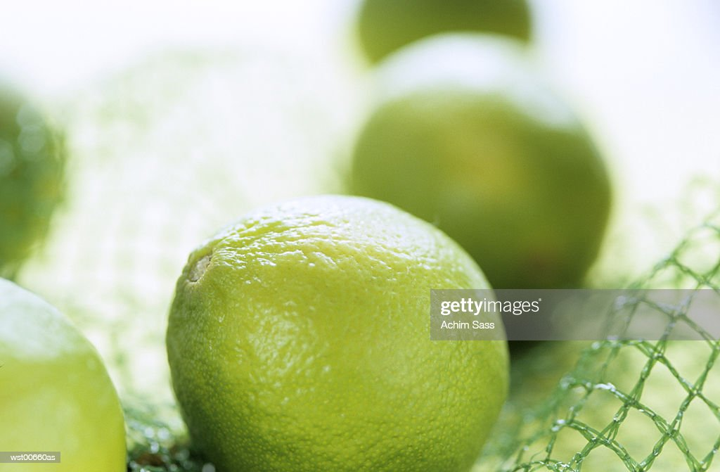 Limes in net, extreme close up : Stock Photo