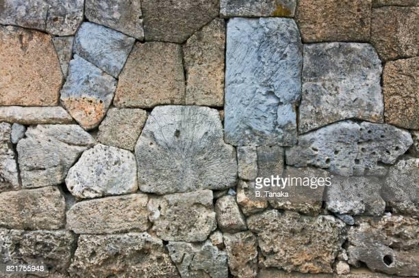 Limestone and Coral Wall on Ishigaki Island in Okinawa, Japan