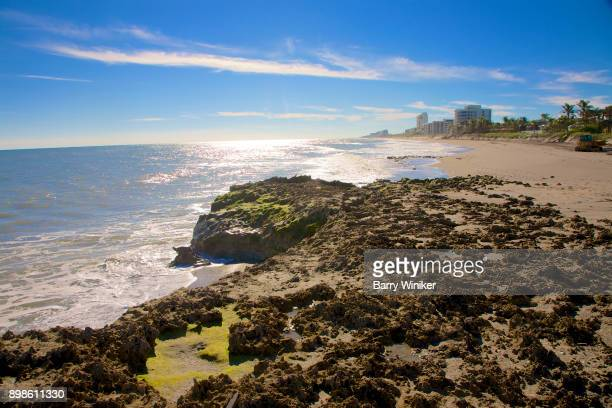 limestone and surf at blowing rocks preserve on jupiter island - jupiter island florida stock photos and pictures