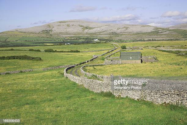 Limestone dry stone walls and view of the Burren near Ballyvaughan County Clare Ireland