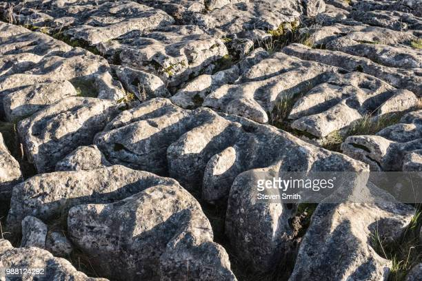 limestone pavement above malham cove, yorkshire, england - limestone pavement stockfoto's en -beelden