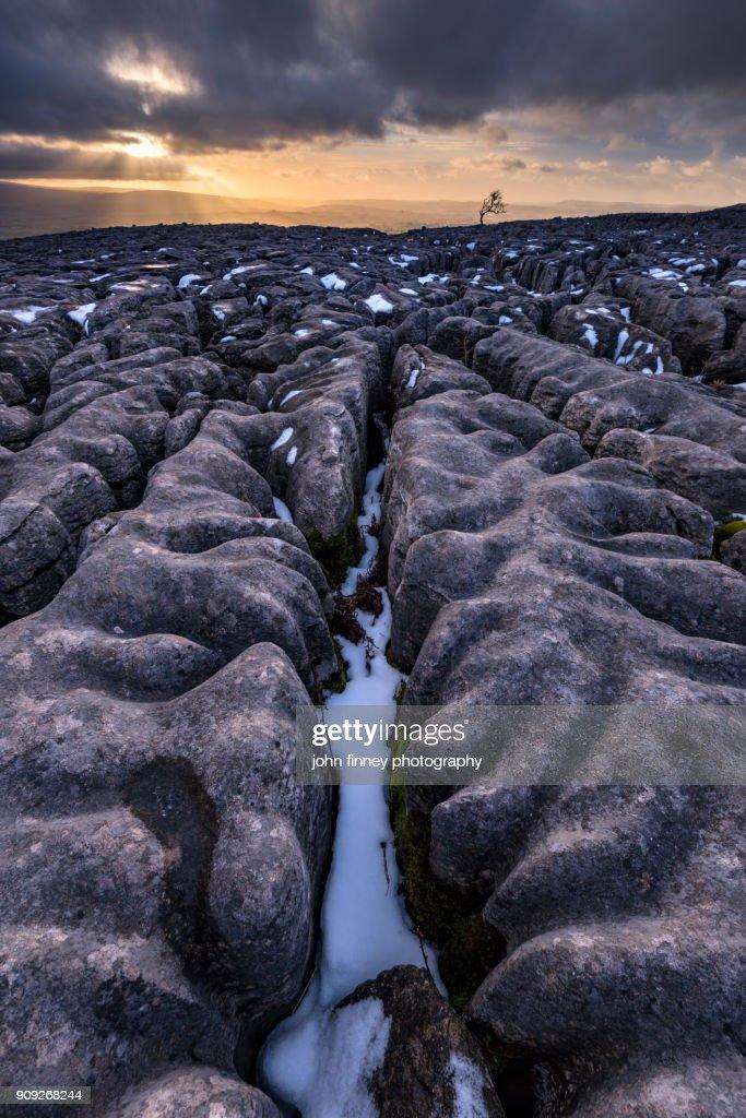 Limestone pavement at sunset. Yorkshire Dales. UK. : Stock Photo