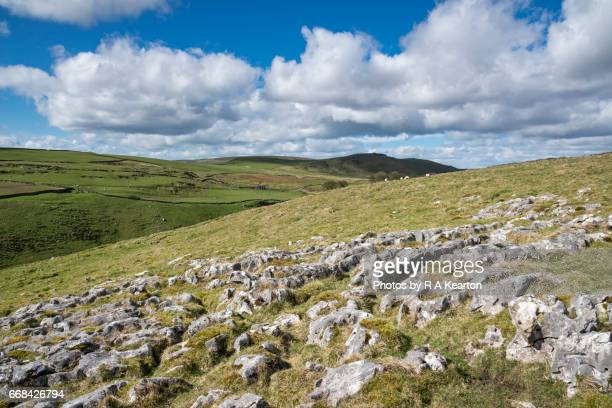 limestone pavement near buxton in the peak district, derbyshire, england. - limestone pavement stock pictures, royalty-free photos & images