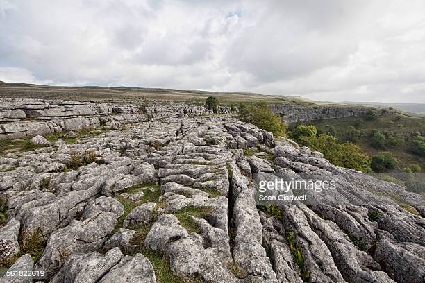 limestone pavement - limestone pavement stock pictures, royalty-free photos & images