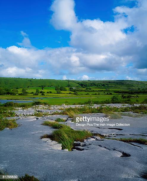 limestone pavement, the burren, co clare, ireland - limestone pavement stock pictures, royalty-free photos & images