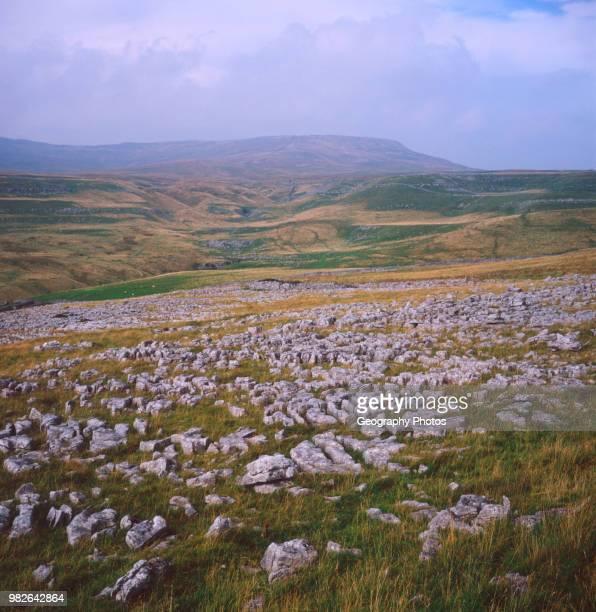 Limestone pavement Yorkshire Dales national park England.