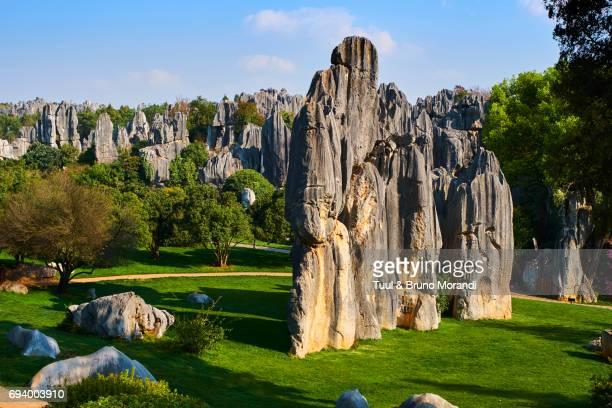 limestone pinnacles in shilin, stone forest, at lunan, yunnan, china - international landmark ストックフォトと画像