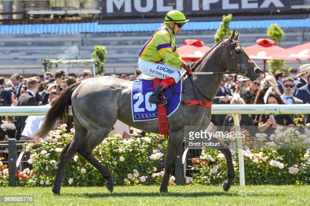 Limestone ridden by Dean Yendall heads to the barrier before the Coolmore Stud Stakes at Flemington Racecourse on November 04 2017 in Flemington...