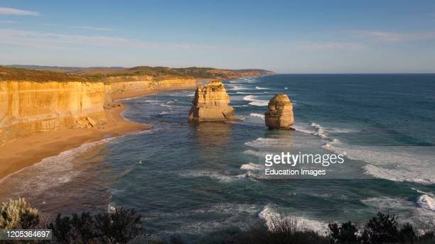 Limestone stacks formed by erosion in the Port Campbell National Park near Port Campbell Great Ocean Road Victoria Australia