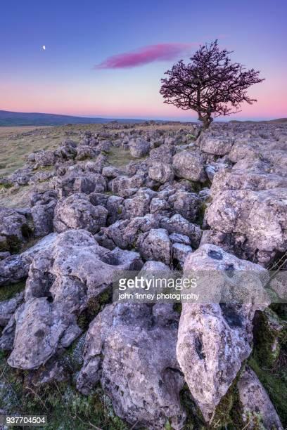Limestone sunrise. Yorkshire Dales. UK.