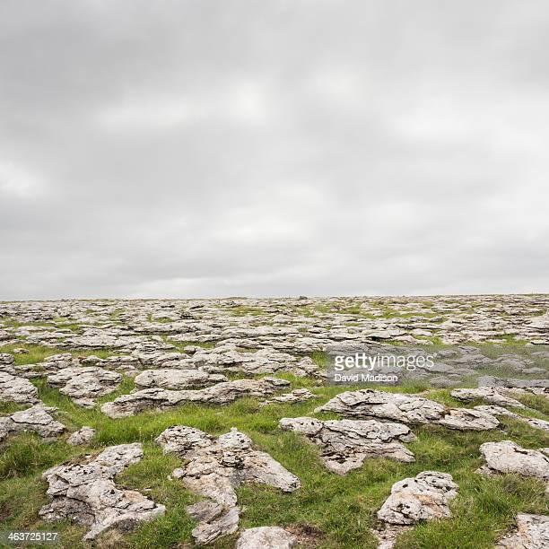 Limestone, Yorkshire Dales National Park.