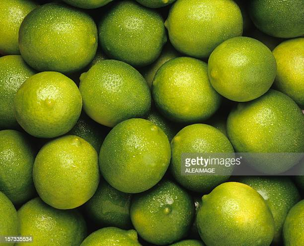 limit - lime stock pictures, royalty-free photos & images