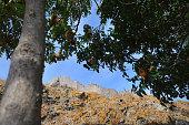 limnos lemnos island fort at myrina