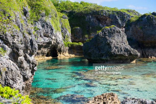 limu pools - samoa stock pictures, royalty-free photos & images