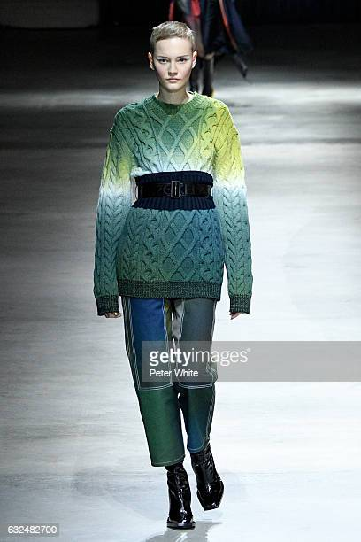 Lina Hoss walks the runway during the Kenzo Menswear Fall/Winter 2017-2018 show as part of Paris Fashion Week on January 22, 2017 in Paris, France.