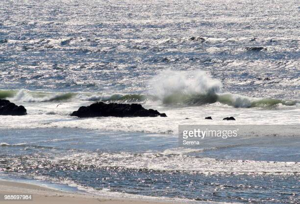 lincoln city oregon ストックフォトと画像 getty images