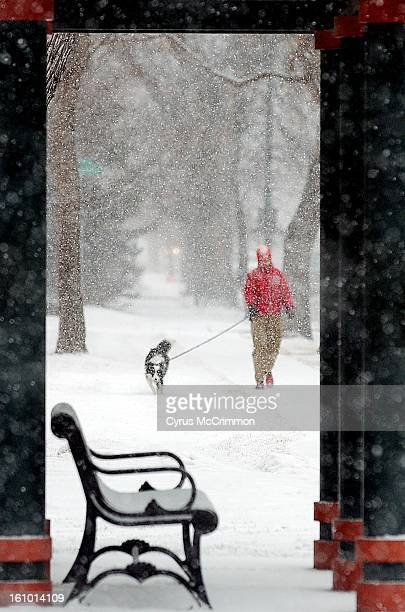 Linda Cumming walks her 10monthold border collie Bo Peep around Observatory Park along Evans Ave during the heavy afternoon snowfall that hit the...