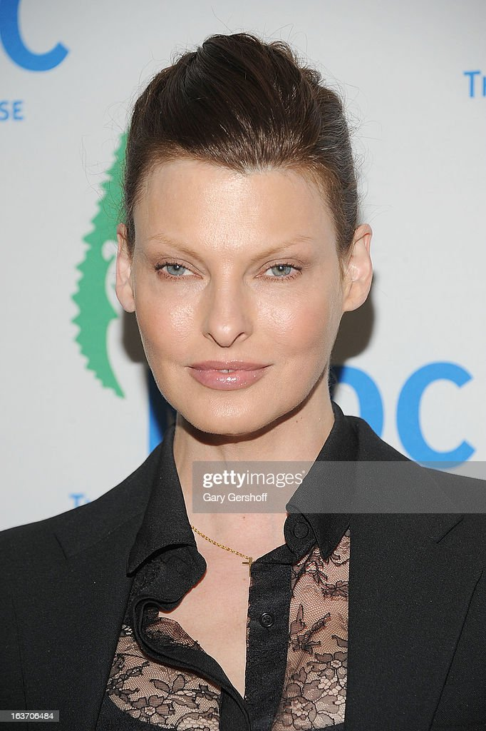 Linda Evangelista attends the 2013 National Resource Defense Council Game Changer Awards at the Mandarin Oriental Hotel on March 14, 2013 in New York City.