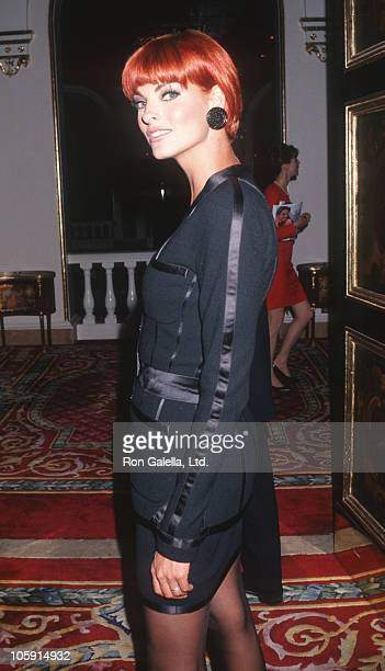 Linda Evangelista during Maybelline Presents 1991 Look of the Year at Plaza Hotel in New York City New York United States