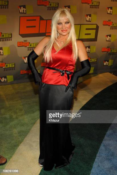 Linda Hogan during VH1 Big in '06 Red Carpet at Sony Studios in Culver City California United States