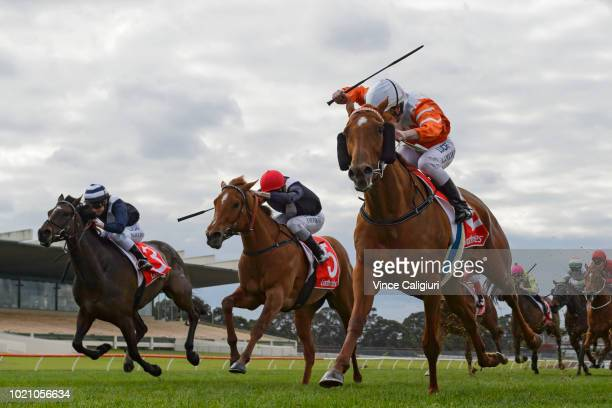 Linda Meech riding Shoko winning Race 5 during Melbourne Racing at Sandown Lakeside on August 22 2018 in Melbourne Australia