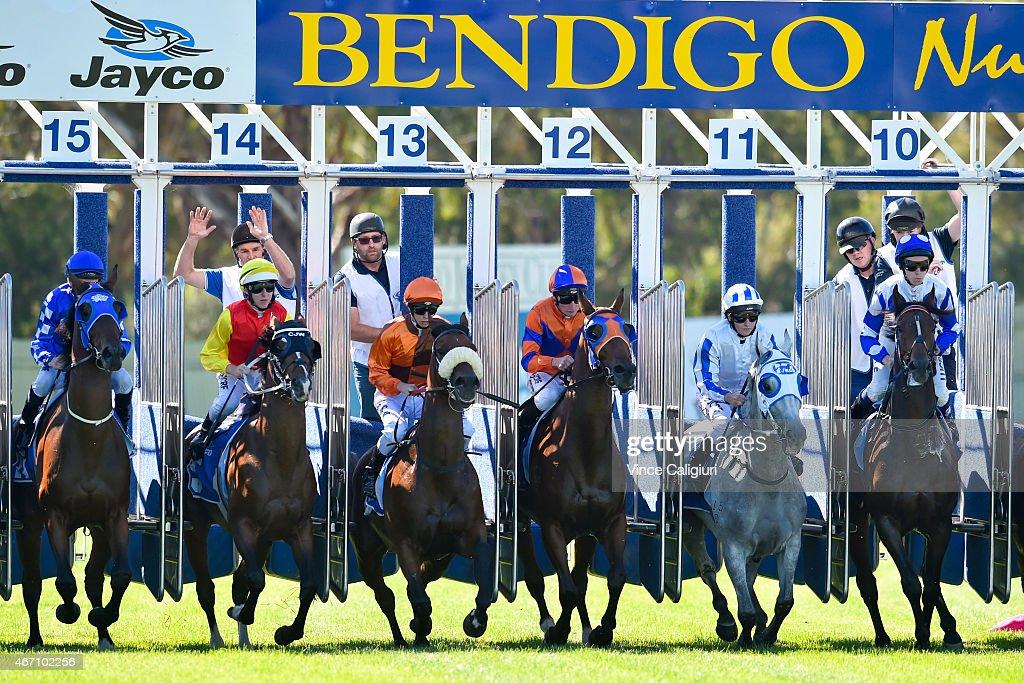 Bendigo Races