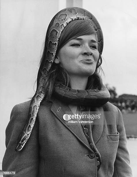 Linda Rooks from Yeovil in Somerset a hostess at Whipsnade Zoo wears 'Tanga' a 7fy long python as a hat and scarf