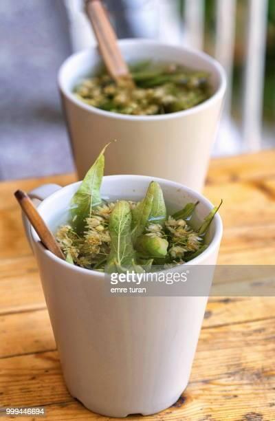 linden tea(DSCF3831-1.jpg)