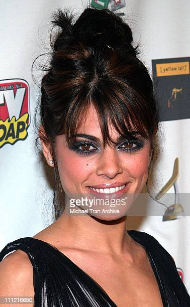 Lindsay Hartley during 4th Annual Golden Boomerang Awards Arrivals at Four Seasons Hotel in Beverly Hills California United States