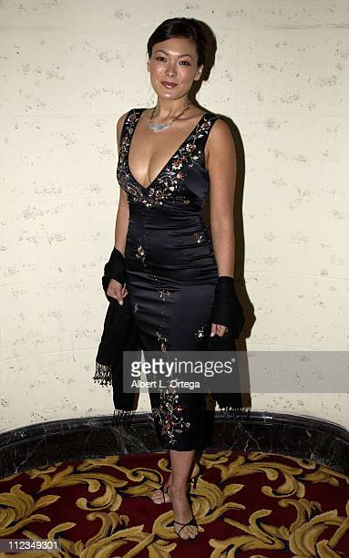 Lindsay Price during 2002 ALMA PreAwards Gala at The Regal Biltmore Hotel in Los Angeles California United States