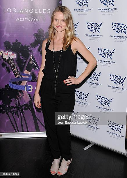 Lindsay Pulsipher attends the HSUS 'Rescue Paws' event at W Westwood on November 10 2010 in Westwood California
