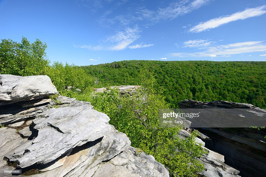 Lindy Point Overlook at Blackwater Falls SP : Stock Photo