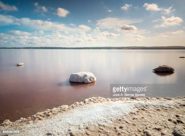 Line of coast of a lagoon of salty water, with white formations of salt and the water pink color, an day of blue sky, with Sun and clouds in salt mines of Torrevieja, Alicante, Spain