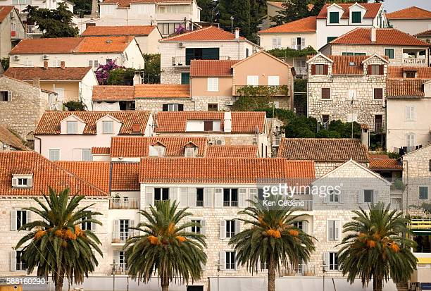 A line of palm trees borders houses situated along a harbor | Location Hvar Croatia