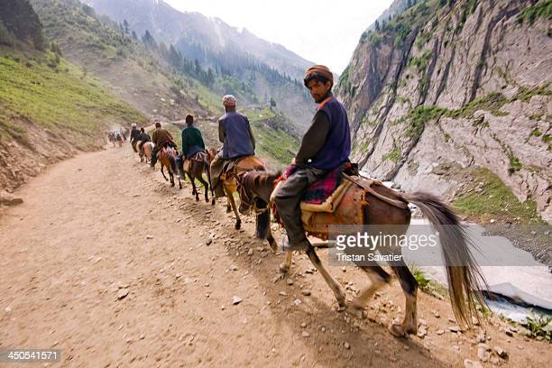 Line of Ponies and Muslim Kashmiris on the Amarnath Cave trail. Every summer, hundreds of thousands of Hindu devotees do the pilgrimage to the holy...