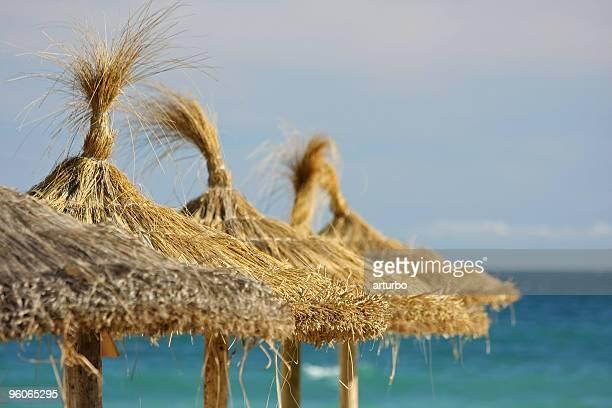 line of straw beach umbrellas