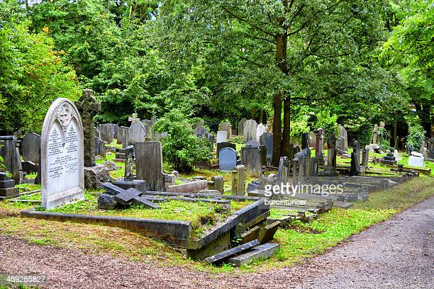 line of tombs in highgate cemetery, london - highgate stock pictures, royalty-free photos & images